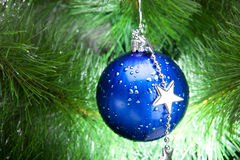 Blue cristmas ball on fir-tree Stock Images