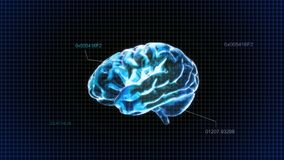 Blue crystal brain code Royalty Free Stock Images