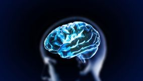 Blue crystal brain with head Royalty Free Stock Image