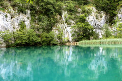 Blue crystal clean lake with fishes and waterfalls. Crystal blue water at the Plitvice lakes having many fishes in the transparent water and waterfalls Royalty Free Stock Image