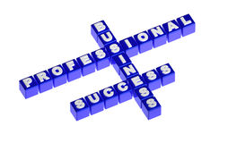Blue cubes words business success professional Royalty Free Stock Photos