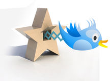 Blue Cuckoo tweets and sings Stock Photo
