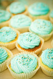 Blue cupcaces Stock Images