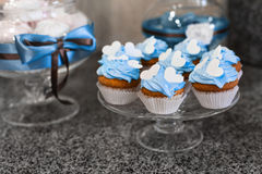 Blue cupcakes. Muffins with cream. Stock Photo