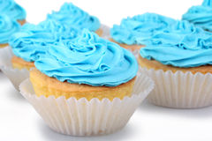 Blue Cupcakes royalty free stock images