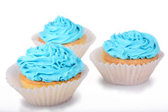 Blue Cupcakes stock photography