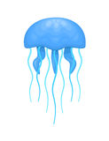 Blue and cyan jellyfish Royalty Free Stock Image