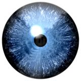 Blue 3d eye texture, human animal eyeball. With white background stock photography