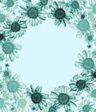 Blue daisy frame. Pastel colour Daisy Frame, on pale blue background Stock Photos