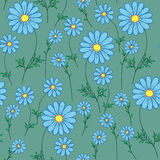 Blue daisy on a green background Royalty Free Stock Photography