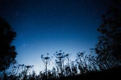 Blue dark night sky with many stars royalty free stock image