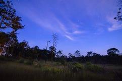 Blue dark night sky with stars Royalty Free Stock Photos