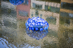 Blue decoration flower over water river reflection Stock Photo