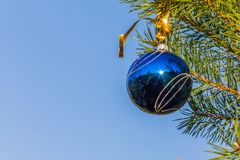 Blue decorative ball on the christmas tree blue sky background. Royalty Free Stock Images