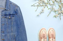 Blue denim jacket, trendy pink sneakers, spring flowers on blue background top view flat lay copy space. Denim, fashionable jacket royalty free stock photography