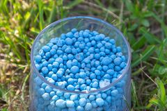 Blue different shape chemical fertilizer granules in glass on green grass.