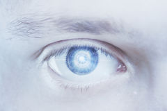 Blue digital male eye Stock Photos