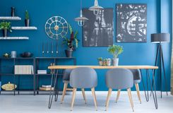 Blue dining room interior. Grey chairs at wooden table in blue dining room interior with black paintings on the wall Royalty Free Stock Image