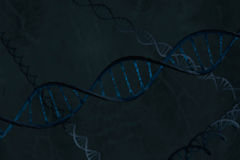 Blue DNA double helix, diagonal facing Stock Image