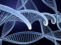 Blue dna Royalty Free Stock Image