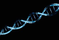Blue DNA molecule structure isolated on black. Genetic code concept Royalty Free Stock Photos