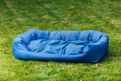 Blue dog bed, grass background Stock Photography