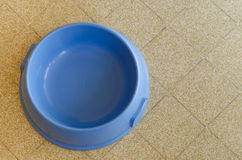 Blue dog bowl Royalty Free Stock Photo