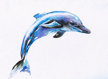 Blue dolphin Royalty Free Stock Photography
