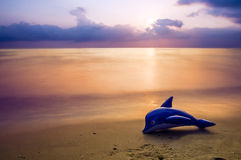 Blue dolphin Royalty Free Stock Images