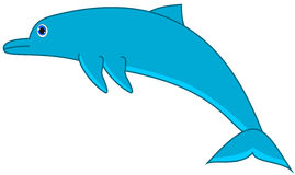 A blue dolphin Stock Image