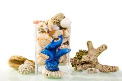 Blue dolphin statuette still life. Blue dolphin statuette with coral, sea sponge and glass vase still life on white background royalty free stock photography