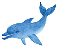 Blue dolphin, watercolor  illustration Royalty Free Stock Photography