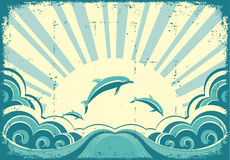 Blue dolphins jumping in sea in summer day. Stock Photo
