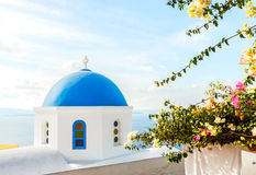 Blue dome and flowers Royalty Free Stock Image