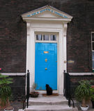 Blue Door. Black cat Stock Photos