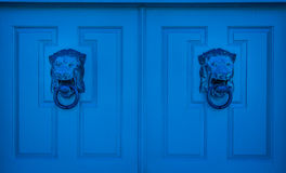 Blue Door Lion Stock Photography