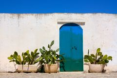Blue door and cactus in Apulia, Italy stock photos