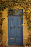 Blue door Gozo Malta. Blue painted door Gozo, Malta with plants climbing around Royalty Free Stock Photos