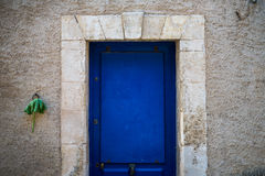 Blue door and green leaf Stock Photography