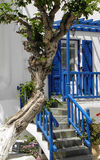 Blue Door. Blue highlights and wash washed walls contrast against a gnarled tree Stock Photography