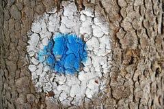 Blue dot marking Stock Photo
