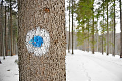 Blue dot marking Royalty Free Stock Images