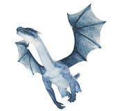 Blue dragon Stock Images