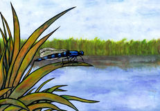 Blue Dragonfly and Lake (Zen Pictures II, 2012) Royalty Free Stock Images