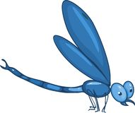 Blue dragonfly Stock Image