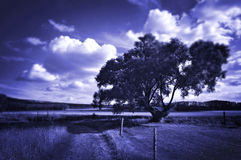 Blue dreamy landscape Royalty Free Stock Photography