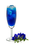 Blue Drink Stock Photos