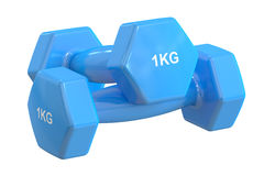 Blue Dumbbells 1 kg, 3D rendering. On white background Royalty Free Stock Images