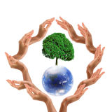 Blue Earth with treee Royalty Free Stock Photo