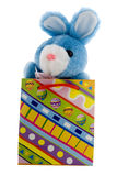 Blue Easter Bunny. Blue plush bunny in an Easter decoration Stock Photography